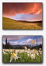 'Palouse Versus the Storm' and 'After the Snows'
