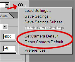 Accessing the Adobe Camera Raw options menu