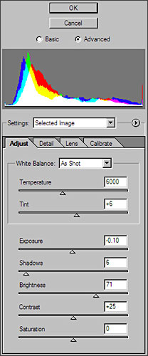 Adobe Camera Raw Adjust Tab