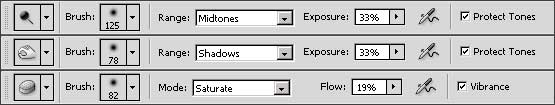 The Options bar in Photoshop CS4 for the Dodge, Burn and Sponge tools