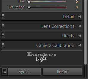 Lightroom End Marks choices