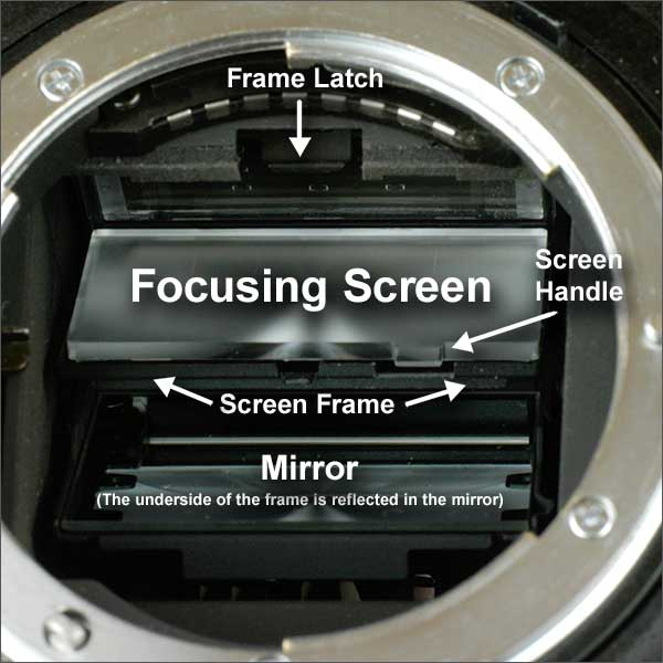 Nikon Focusing Screen
