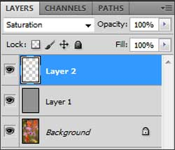 Adjustment layers for fixing gamut warnings