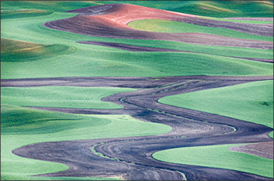 The rolling green hills of the Palouse