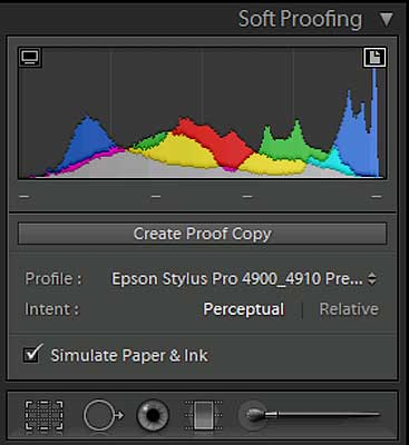 Lightroom 4 Soft Proofing panel