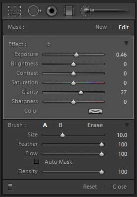 Lightroom adjustment brush settings