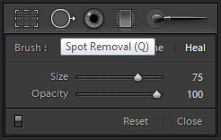 Spot Removal in Adobe Lightroom