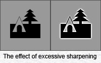 The halos that result from excessive sharpening