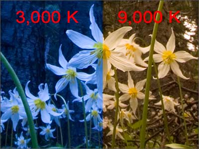 Results of shooting avalanche lilies at 3000 and 9000 Kelvin