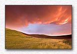 Palouse Versus the Storm